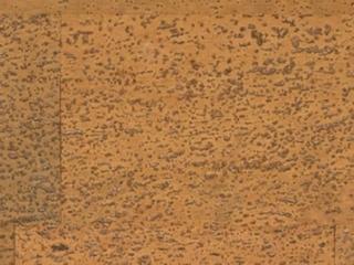 Пробовый пол Wicanders Caramel-I833002 31 класс